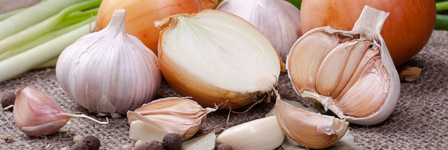 Garlic and Onion.jpg