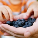 kid eating bluberries, food cures
