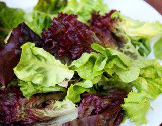 lettuce, Healthy Salad, Food Cures